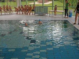 Zum Schwimmen fahren wir mit dem Taxibus in der 2.Klasse ins Limbomar. Dort sind wir eigenteilt in zwei Gruppen – Schwimmer und Nichtschwimmer. Frau Bretschneider begleitet uns.